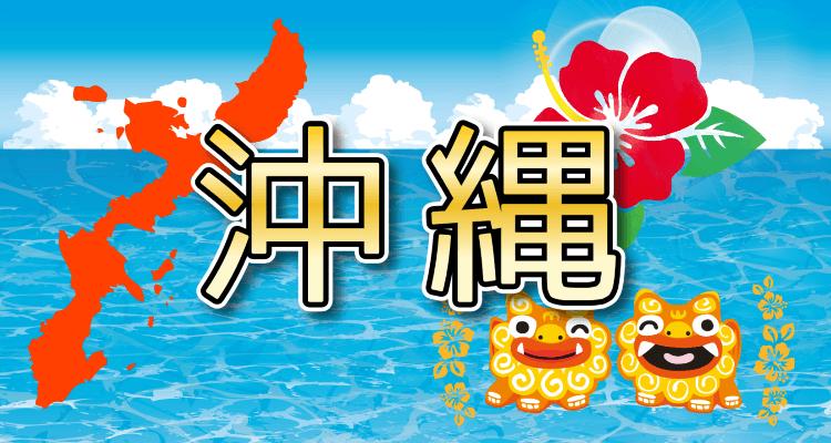 沖縄の海とシーザー、ハイビスカス